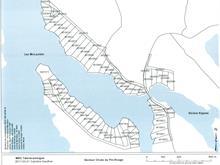 Terrain à vendre à Kipawa, Abitibi-Témiscamingue, Chemin  Chute-aux-Pins-Rouges, 14921468 - Centris