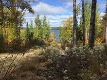 Lot for sale in Lac-Bouchette, Saguenay/Lac-Saint-Jean, 167, Chemin du Cap-de-la-Grêle, 11957598 - Centris