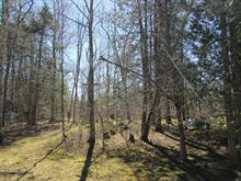 Lot for sale in Hatley - Municipalité, Estrie, 16, Rue des Bouleaux, 13501929 - Centris