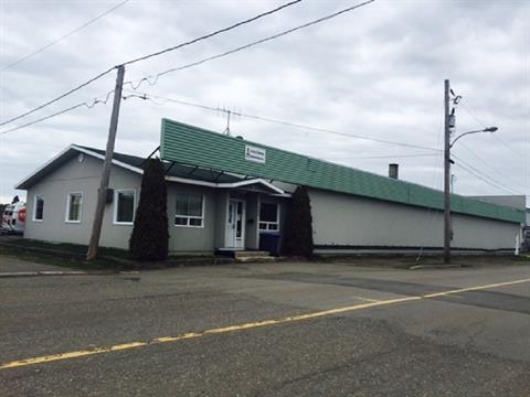 Commercial building for sale in Saint-Pascal, Bas-Saint-Laurent, 355, Avenue  Bouchard, 13054680 - Centris