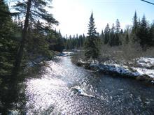 Terre à vendre à Saint-Donat, Lanaudière, Route  125 Nord, 21914904 - Centris