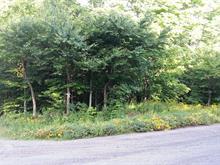 Terrain à vendre à Saint-Adolphe-d'Howard, Laurentides, 17e Avenue Est, 16946909 - Centris