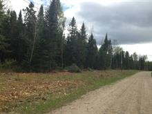 Lot for sale in Grand-Remous, Outaouais, Chemin  Sénéchal, 10130420 - Centris