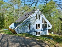 Maison à vendre à Mont-Tremblant, Laurentides, 204, Chemin de Courchevel, 11094711 - Centris