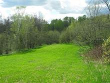 Lot for sale in Mont-Laurier, Laurentides, 877, Chemin  Tour-du-Lac-des-Îles, 11657092 - Centris