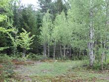 Terrain à vendre à Chertsey, Lanaudière, Avenue du Condor, 20358364 - Centris