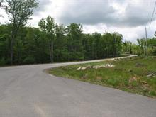 Lot for sale in Mont-Tremblant, Laurentides, Chemin de la Goutterelle, 14384873 - Centris