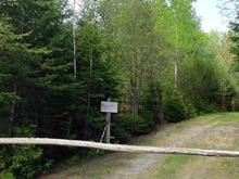 Terrain à vendre à Wentworth-Nord, Laurentides, 1939, Route  Principale, 13357933 - Centris