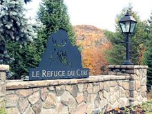 Terrain à vendre à Mont-Tremblant, Laurentides, Chemin des Cerfs, 19996269 - Centris