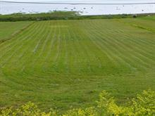 Lot for sale in Petite-Rivière-Saint-François, Capitale-Nationale, Rue  Principale, 25604728 - Centris
