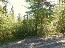 Terre à vendre à Sainte-Marguerite-du-Lac-Masson, Laurentides, Rue des Montagnards, 28465751 - Centris