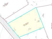 Terrain à vendre à Val-des-Bois, Outaouais, 205, Chemin  Hayes, 20693186 - Centris