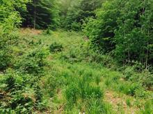Terrain à vendre à Val-des-Monts, Outaouais, 106, Chemin du Verdier, 11375901 - Centris