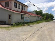 Industrial building for sale in Acton Vale, Montérégie, 999, Route  116, 9579417 - Centris