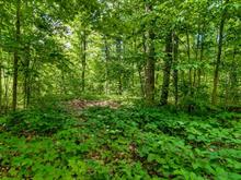 Lot for sale in Aylmer (Gatineau), Outaouais, Chemin  Queen's Park, 25524004 - Centris