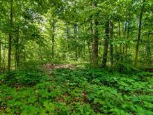 Terrain à vendre à Aylmer (Gatineau), Outaouais, Chemin  Queen's Park, 25524004 - Centris
