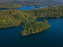 Lot for sale in Lac-Tremblant-Nord, Laurentides, Chemin de la Baie-des-Ours, 14981711 - Centris