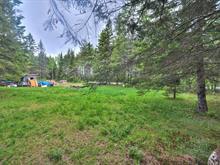 Terrain à vendre à Bowman, Outaouais, 200, Chemin du Chevreuil-Blanc, 22962708 - Centris