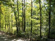 Lot for sale in La Pêche, Outaouais, 30, Chemin de la Chapelle, 20397811 - Centris