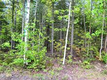 Lot for sale in Rimouski, Bas-Saint-Laurent, Rue des Glaces, 13561852 - Centris