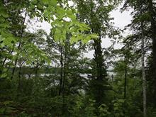 Lot for sale in Grandes-Piles, Mauricie, Chemin de Florence, 21363784 - Centris