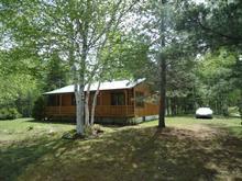 Maison à vendre à L'Ascension-de-Notre-Seigneur, Saguenay/Lac-Saint-Jean, 2543, Route de la Chute-du-Diable, 10785450 - Centris