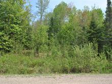 Lot for sale in Lac-Supérieur, Laurentides, Chemin des Lilas, 23729123 - Centris