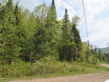 Lot for sale in Lac-Supérieur, Laurentides, Chemin des Lilas, 21847263 - Centris