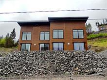Maison à vendre à Saint-David-de-Falardeau, Saguenay/Lac-Saint-Jean, 115, Rue du Massif, 10162900 - Centris