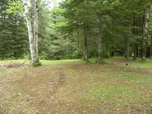Lot for sale in Amherst, Laurentides, Chemin  Filion, 25975946 - Centris