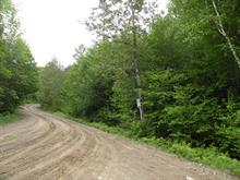 Lot for sale in Amherst, Laurentides, Chemin des Gadeliers, 22046389 - Centris