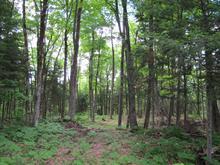 Terrain à vendre à Harrington, Laurentides, Chemin de la Petite-Rivière, 25479607 - Centris