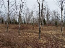Lot for sale in Lambton, Estrie, Chemin  Garant, 17544127 - Centris