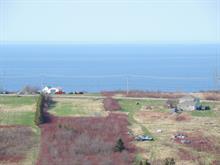 Terre à vendre à Gaspé, Gaspésie/Îles-de-la-Madeleine, boulevard du Griffon, 13241342 - Centris