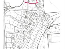 Lot for sale in Saint-Michel-des-Saints, Lanaudière, Chemin du Pommier, 24808055 - Centris
