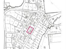 Lot for sale in Saint-Michel-des-Saints, Lanaudière, Chemin des Pins, 13754917 - Centris