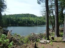 Land for sale in La Pêche, Outaouais, Chemin  Usher, 20424866 - Centris