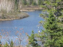 Terrain à vendre à Saint-Charles-de-Bourget, Saguenay/Lac-Saint-Jean, 6, Chemin du Lac-Charles, 19595223 - Centris