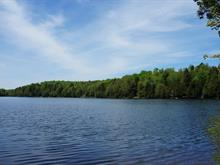 Lot for sale in Wentworth-Nord, Laurentides, Chemin du Lac-Gustave Nord, 23143263 - Centris