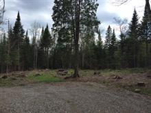 Terrain à vendre à Saint-Faustin/Lac-Carré, Laurentides, Chemin de la Baie, 25933983 - Centris