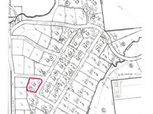 Lot for sale in Saint-Michel-des-Saints, Lanaudière, Chemin des Plaines, 16366003 - Centris