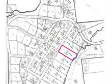 Terrain à vendre à Saint-Michel-des-Saints, Lanaudière, Chemin des Pins, 21679051 - Centris