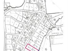 Lot for sale in Saint-Michel-des-Saints, Lanaudière, Chemin des Pins, 11328638 - Centris