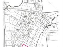 Terrain à vendre à Saint-Michel-des-Saints, Lanaudière, Chemin des Pins, 10082459 - Centris