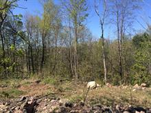 Land for sale in L'Ange-Gardien, Outaouais, Chemin  Jos-Montferrand, 10227024 - Centris