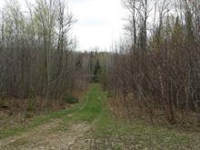 Terre à vendre à Aumond, Outaouais, Chemin  Guilbeault, 22457102 - Centris