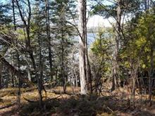 Lot for sale in Gracefield, Outaouais, Chemin du Lac-Désormeaux, 19653357 - Centris
