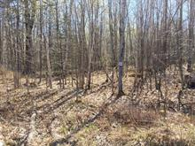 Lot for sale in Potton, Estrie, Chemin des Faisans, 9592905 - Centris