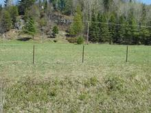 Lot for sale in Notre-Dame-de-la-Salette, Outaouais, Chemin  Thomas Sud, 14480643 - Centris