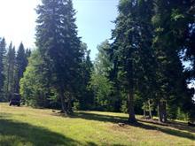 Terrain à vendre à Témiscouata-sur-le-Lac, Bas-Saint-Laurent, Chemin de la Grosse-Roche, 10709844 - Centris